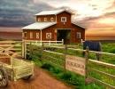 脱出ゲーム Escape Stud Farm