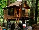 脱出ゲーム Treasure Tree House Escape