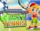 特殊ショットも打てるシンプルなテニスゲーム クレイジー テニス